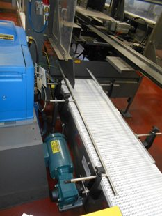Food Conveying System