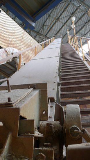 Corrugated Belt Conveyor System