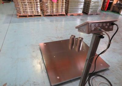 Custom Floor Scale